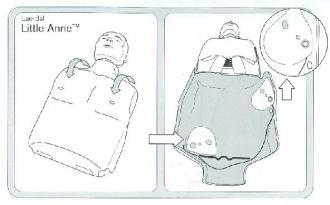 Adaptateur interne DAE pour mannequin